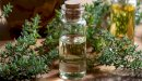 فوائد الزيوت الأساسية في فصل الشتاء