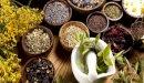 علاج مرض باركنسون بالأعشاب: حقيقة أم خرافة قد تضرك؟