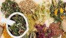 علاج ضعف عضلة القلب بالأعشاب: حقيقة أم خرافة قد تضرك؟