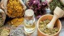 علاج سرطان العظام بالأعشاب: حقيقة أم خرافة قد تضرك؟