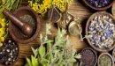 هل يوجد علاج للرشح بالأعشاب؟ وما رأي العلم؟