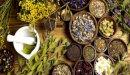 طرق علاج آلام المفاصل بالأعشاب: ما بين الخرافات والحقائق