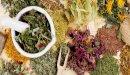 هل يوجد علاج لعلاج حساسية الأنف المزمنة بالأعشاب؟ وما رأي العلم؟