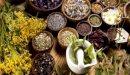 هل يوجد علاج لعسر الهضم بالأعشاب؟ وما رأي العلم؟