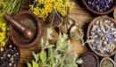 علاج قرحة عنق الرحم بالأعشاب: حقيقة أم خرافة قد تضرك؟