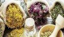 علاج التهاب الأوتار بالأعشاب: حقيقة أم خرافة قد تضرك؟