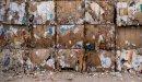 أهمية إعادة تدوير الورق والكرتون للبيئة والاقتصاد