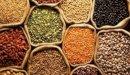 حمية غذائية لمريض التفول: ما المسموح وما الممنوع أكله؟