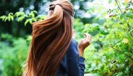 أطعمة تساعد على تقوية الشعر