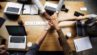 كيف تبني شبكة علاقات قوية في مجال العمل