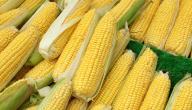 فوائد الذرة الصحية