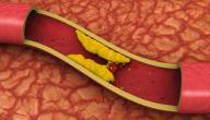 ما هي وظيفة الكولسترول في الجسم؟