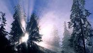 كيف يؤثر الشتاء على النوم