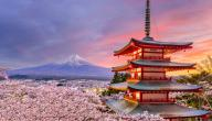 أغرب المعلومات عن اليابان