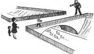 وجه الاختلاف بين عقدة إليكترا وعقدة أوديب