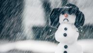 علاج الاكتئاب الشتوي