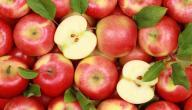 مخاطر تناول بذور التفاح