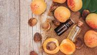 ما هي الفوئد الصحية لزيت المشمش