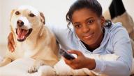 فوائد تربية الحيوانات الأليفة