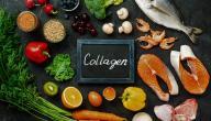 الكولاجين و وظيفته في الجسم