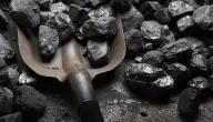 ما الفرق بين الفحم النباتي والفحم الحجري