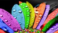 تحليل الشخصية عن طريق الألوان
