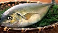 كيف أعرف السمك الطازج