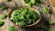 أطعمة تعمل على زيادة الحديد في الدم