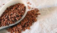 الفوائد الصحية لتناول بذور الكتان