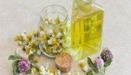هل يوجد علاج للتلبك المعوي بالأعشاب؟ وما رأي العلم؟