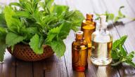 هل يوجد علاج لحكة الجسم بالأعشاب؟ وما رأي العلم؟
