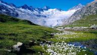 أين تقع جبال الألب ؟