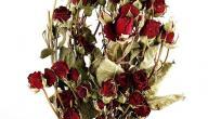 طريقة تجفيف الورد الطبيعي