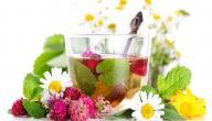 علاج الالتهابات المهبلية بالأعشاب