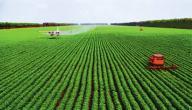 طرق الزراعة الحديثة