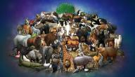 معلومات عن عالم الحيوان