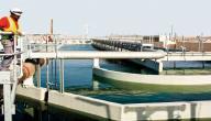 مراحل معالجة مياه الصرف الصحي