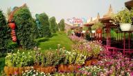 معلومات عن حديقة الفراشات في دبي