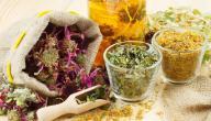 هل يوجد علاج لانسداد الأمعاء بالأعشاب؟ وما رأي العلم؟