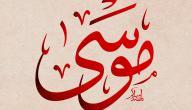 عدد أبناء سيدنا إبراهيم