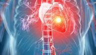 لماذا لا يصاب القلب بمرض السرطان