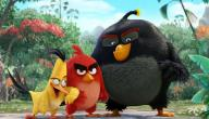 قصة فيلم The Angry Birds Movie