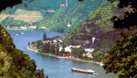 معلومات عن نهر الراين