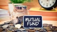 كيفية الاستثمار في صناديق الاستثمار