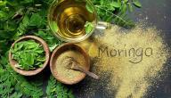 فوائد عشبة المورينجا للشعر