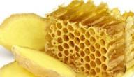 العسل والزنجبيل لعلاج سرعة القذف