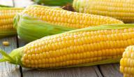 أهمية الذرة للأطفال