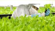 تعريف الزراعة الالكترونية