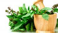 علاج نزيف الأنف بالأعشاب: حقيقة أم خرافة قد تضرك؟
