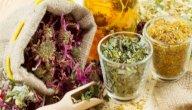 هل يوجد علاج لحساسية الجلد بالأعشاب؟ وما رأي العلم؟